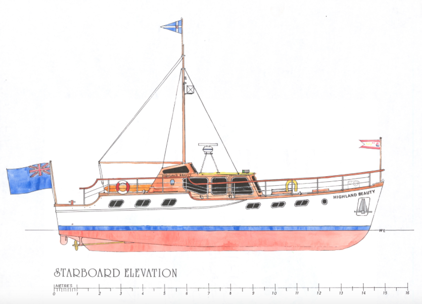 Highland Beauty Drawing Image